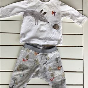Catimini fox and hedgehog outfit for Fall, 6m